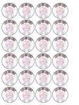24 x Baby Girl Shower Personalised Rice Wafer Paper Cup Bun Cake Top Toppers